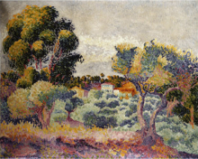 Eucalyptus and Olive Grove